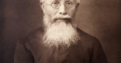 Dadabhai Naoroji – 1893 Comments on East India Revenue Accounts